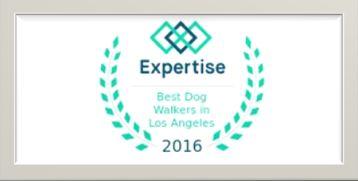 Best Dog Walker in Los Angeles