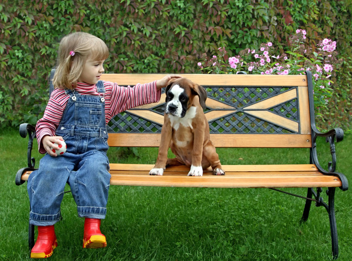 West side dog nanny los angeles dog boarding dog walker for Dog boarding santa monica