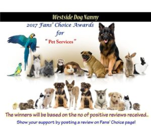 2017 Fans Choice Awards Winner