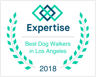 Best Dog Walker in Los Angeles